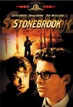 Stonebrook (1999) afişi