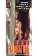 Sudden Manhattan (1996) afişi