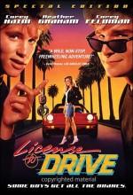Sürücü Ehliyeti (1988) afişi
