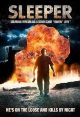 Sleeper (2012) afişi
