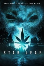Star Leaf (2015) afişi