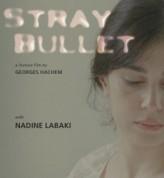 Stray Bullet (2010) afişi
