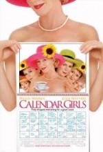 Takvim Kızları (2003) afişi