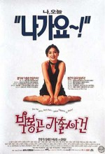The Adventures Of Mrs Park (1996) afişi