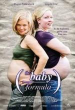 The Baby Formula (2008) afişi