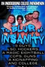 The Blur Of ınsanity