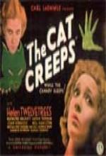 The Cat Creeps (1930) afişi