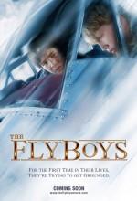 Acemi Pilotlar (2008) afişi