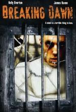 The Gleam Of Dawn (2004) afişi