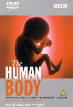 The Human Body (2001) afişi