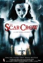 The Scar Crow (2009) afişi