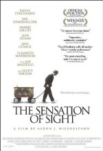 The Sensation of Sight (2006) afişi