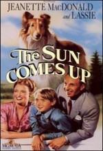 The Sun Comes Up (1949) afişi