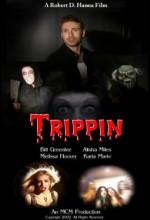 Trippin' (2003) afişi