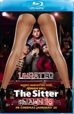 The Sitter (2011) afişi