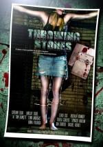 Throwing Stones (2010) afişi