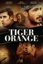 Tiger Orange (2014) afişi
