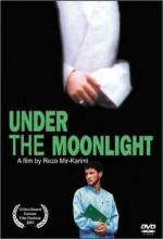 Under The Moonlight (2001) afişi