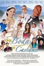 Una Boda en Castañer (2015) afişi