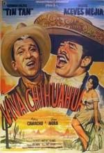 Viva Chihuahua (1961) afişi