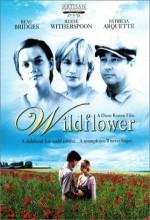 Wildflower (1991) afişi