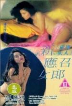 Xin Ying Zhao Nu Lang (1994) afişi