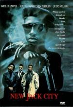 Zehirli Sokaklar (1991) afişi