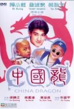 Zhong Guo Long (1995) afişi