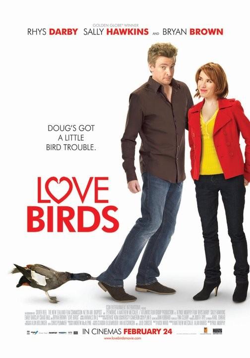 Love Birds (ı)