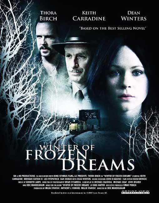 Düşlerin Donduğu Kış (2009) afişi