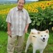 Star Protector Dog Resimleri