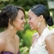 Çifte Düğün Resimleri