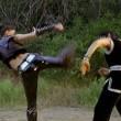 Sanal Dövüşçüler Resimleri