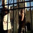 Korku Evi(2008) Resimleri