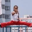 The Karate Kid Resimleri 60