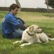 Köpek Severler Senfonisi Resimleri