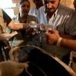 Egypt's New Tomb Revealed Resimleri