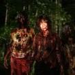 Karanlık Orman Resimleri