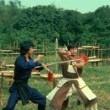 The ıncredible Kung Fu Master Resimleri