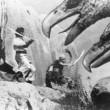 Şehzade Sinbad Kaf Dağında Resimleri