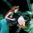 Küçük Deniz Kızı (müzikal) Resimleri